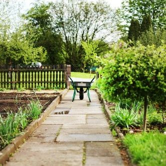 NHS Property Services to invest £2m in social prescribing initiatives